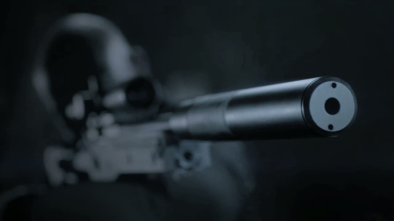 Hitman Sniper  Videos and Trailers