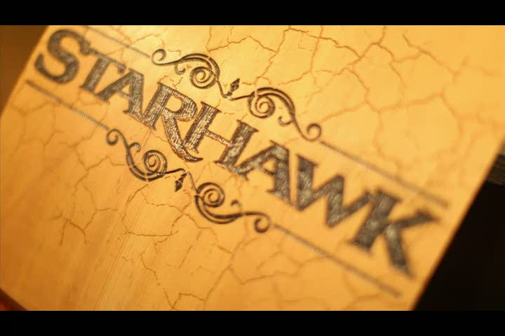 Developer Diary | Starhawk